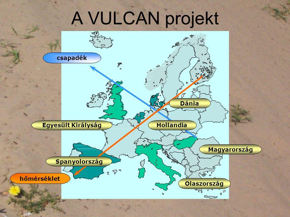 A VULCAN projekt