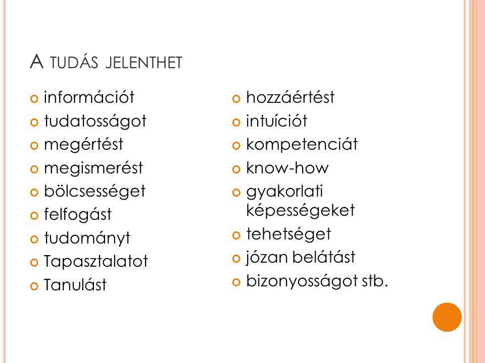 tudásvagyon vs. tudástőke 13