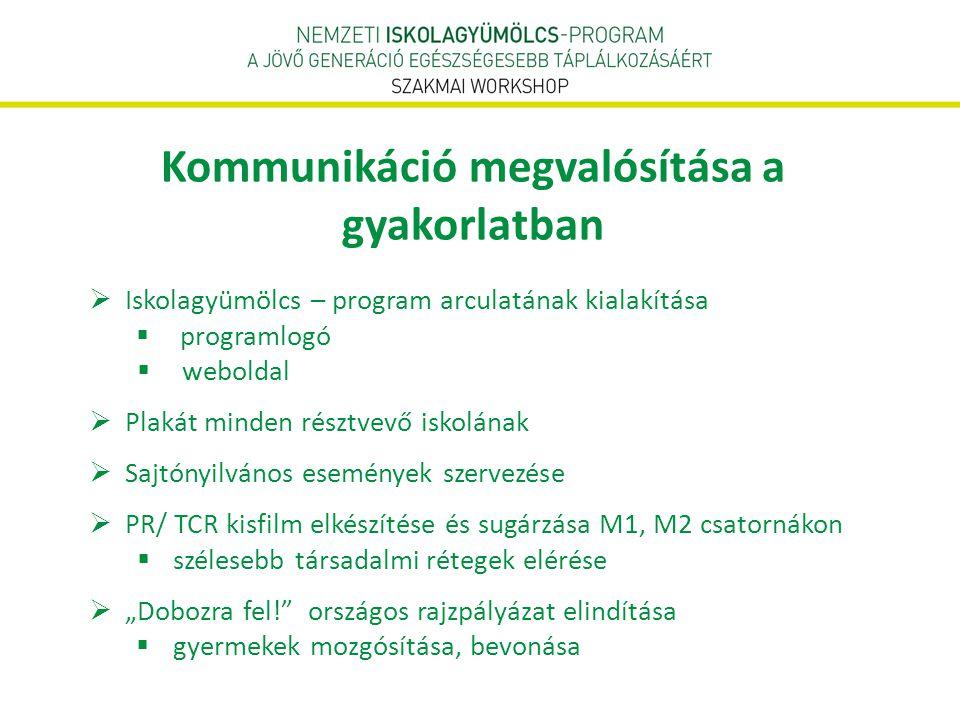 Kommunikáció megvalósítása a gyakorlatban  Iskolagyümölcs – program arculatának kialakítása  programlogó  weboldal  Plakát minden résztvevő iskolá