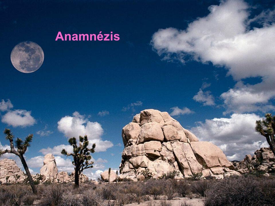 Anamnézis