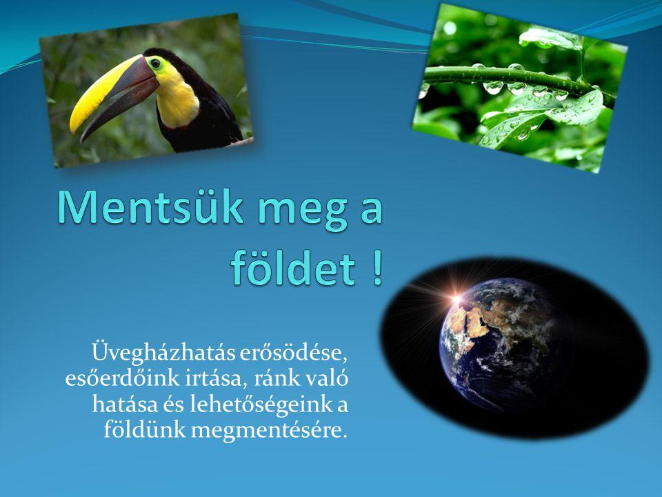 Üvegházhatás erősödése, esőerdőink irtása, ránk való hatása és lehetőségeink a földünk megmentésére.