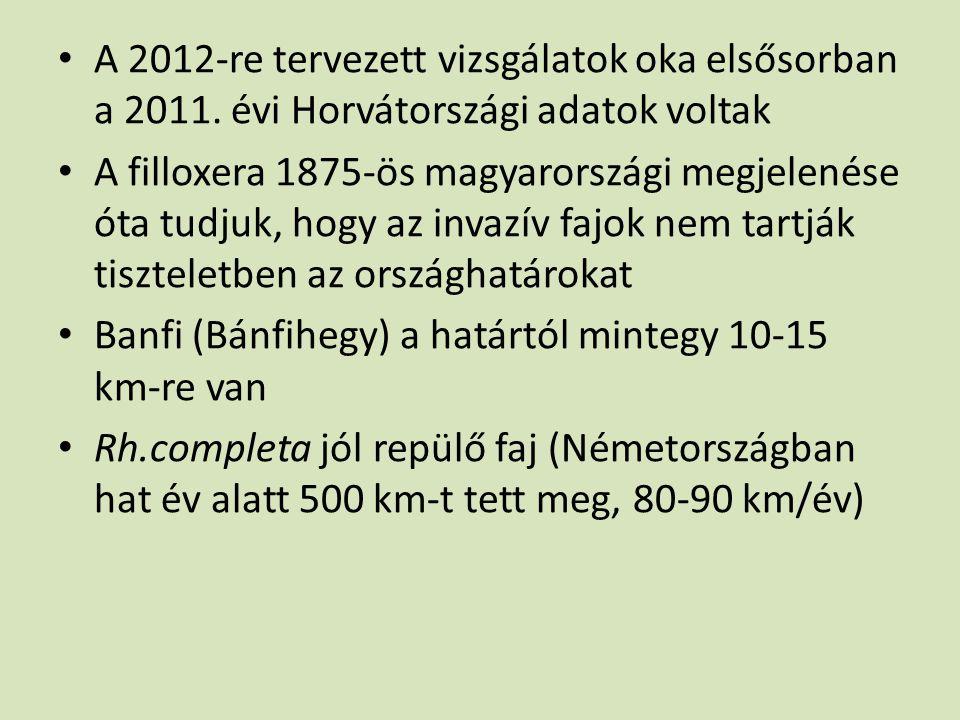 • A 2012-re tervezett vizsgálatok oka elsősorban a 2011. évi Horvátországi adatok voltak • A filloxera 1875-ös magyarországi megjelenése óta tudjuk, h
