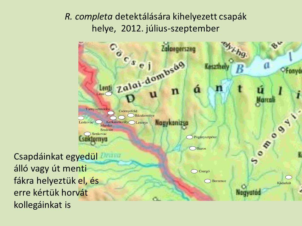 R. completa detektálására kihelyezett csapák helye, 2012. július-szeptember Csapdáinkat egyedül álló vagy út menti fákra helyeztük el, és erre kértük