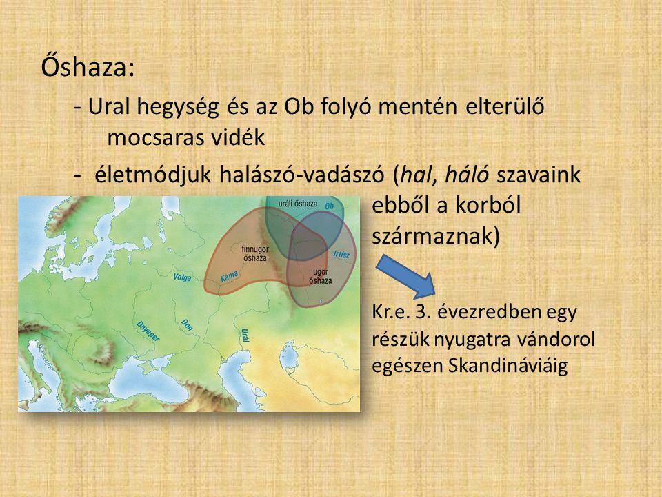 Őshaza: - Ural hegység és az Ob folyó mentén elterülő mocsaras vidék -életmódjuk halászó-vadászó (hal, háló szavaink ebből a korból származnak) Kr.e.