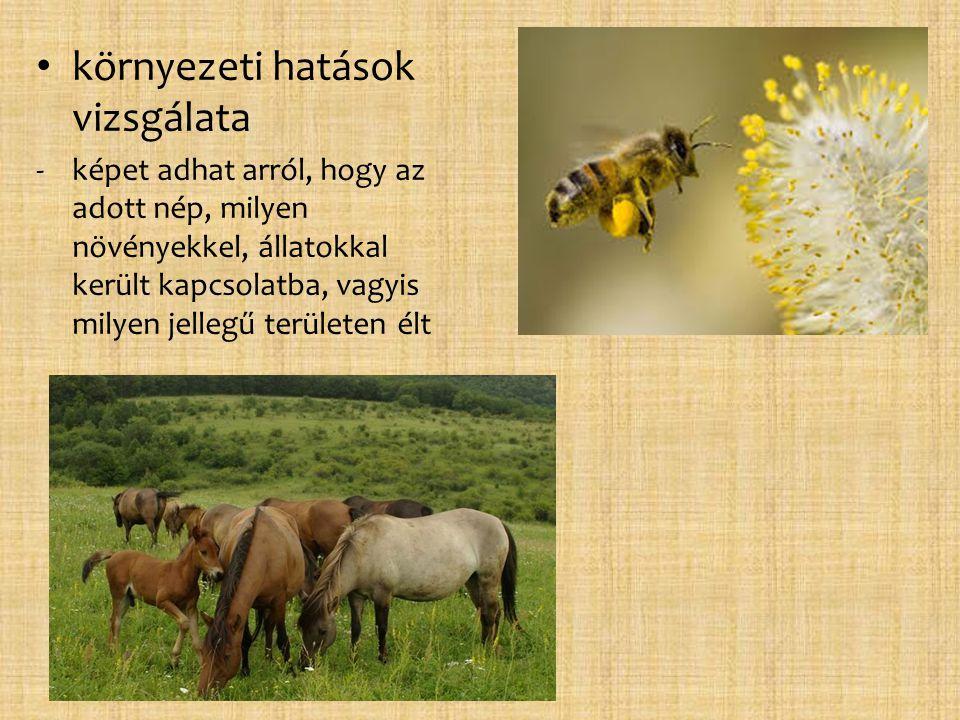 • környezeti hatások vizsgálata -képet adhat arról, hogy az adott nép, milyen növényekkel, állatokkal került kapcsolatba, vagyis milyen jellegű terüle