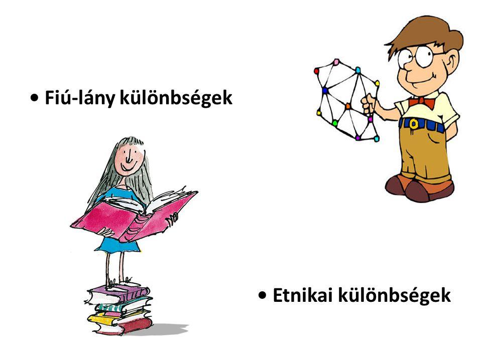 • Fiú-lány különbségek • Etnikai különbségek