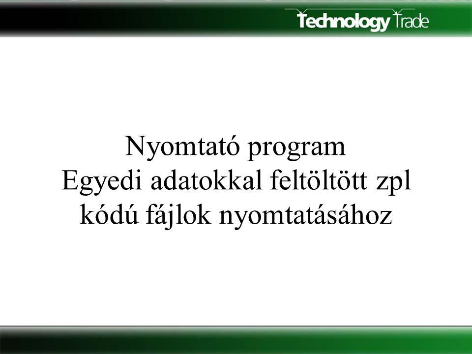 Program funkciók • USB porton keresztül kommunikál és egy kiegészítő eszköztől (kontrollertől) kapott jel hatására az előre elkészített minta fájlt kinyomtatja a feltöltött értékekkel.