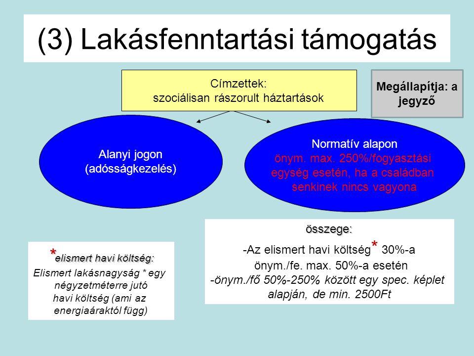 (3) Lakásfenntartási támogatás Címzettek: szociálisan rászorult háztartások Alanyi jogon (adósságkezelés) Normatív alapon önym. max. 250%/fogyasztási