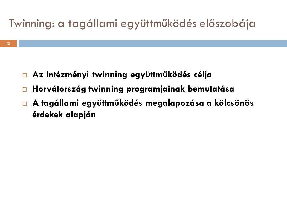 Twinning: a tagállami együttműködés előszobája 2  Az intézményi twinning együttműködés célja  Horvátország twinning programjainak bemutatása  A tagállami együttműködés megalapozása a kölcsönös érdekek alapján