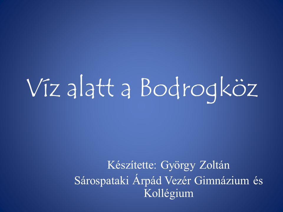 Víz alatt a Bodrogköz Készítette: György Zoltán Sárospataki Árpád Vezér Gimnázium és Kollégium