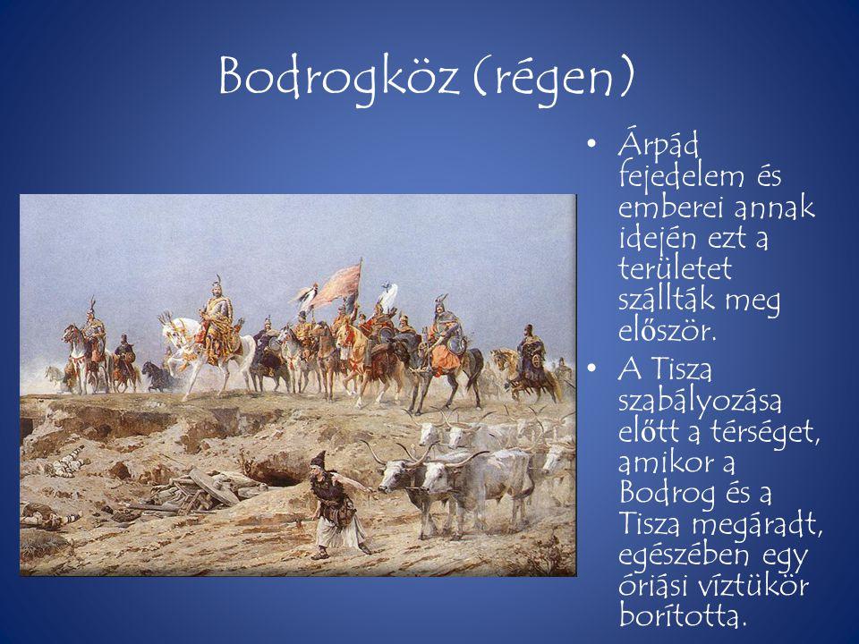 Bodrogköz (régen) • Árpád fejedelem és emberei annak idején ezt a területet szállták meg el ő ször. • A Tisza szabályozása el ő tt a térséget, amikor