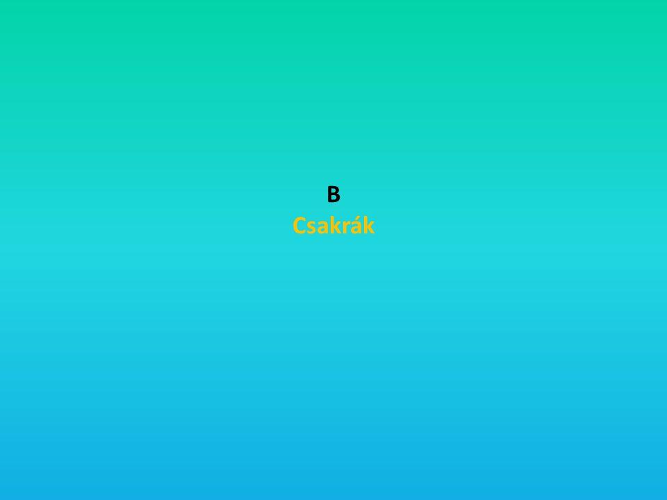 B Csakrák