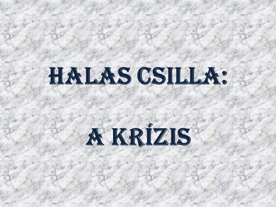 Halas Csilla: A Krízis