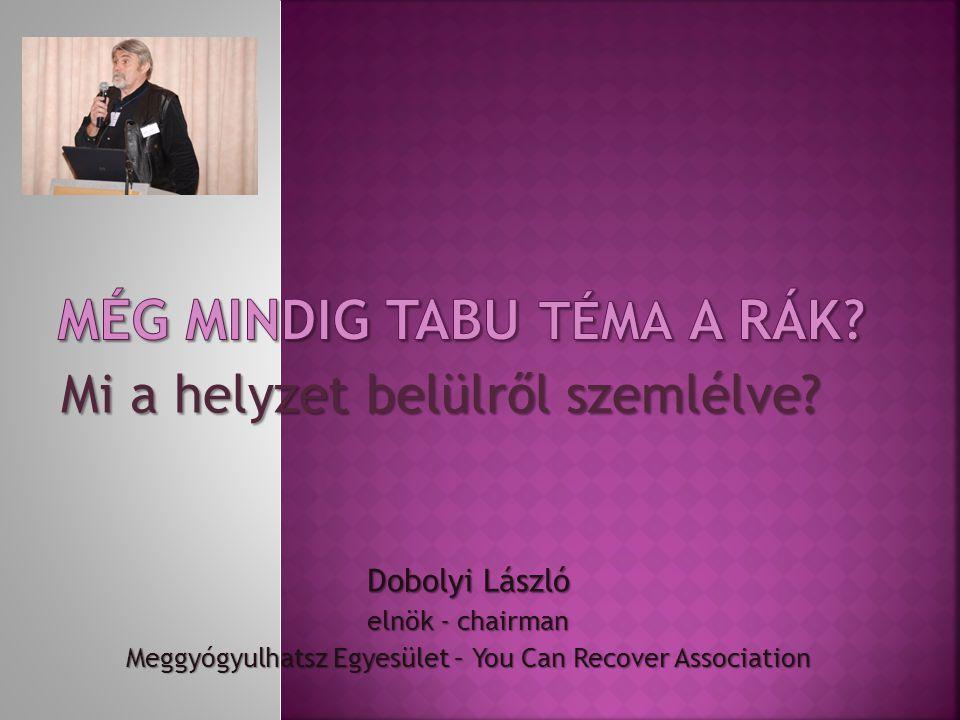 Mi a helyzet belülről szemlélve? Dobolyi László elnök - chairman Meggyógyulhatsz Egyesület – You Can Recover Association