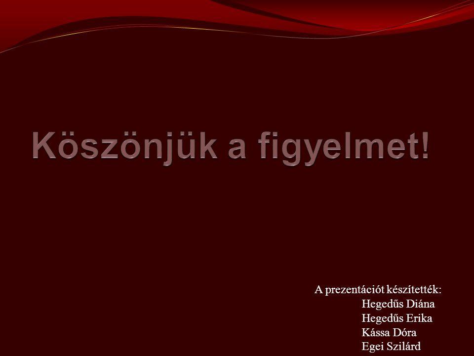A prezentációt készítették: Hegedűs Diána Hegedűs Erika Kássa Dóra Egei Szilárd