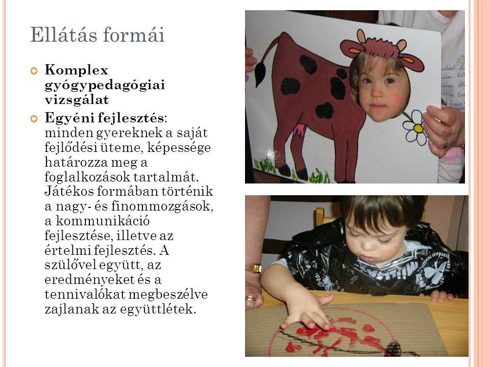 Ellátás formái Komplex gyógypedagógiai vizsgálat Egyéni fejlesztés : minden gyereknek a saját fejlődési üteme, képessége határozza meg a foglalkozások