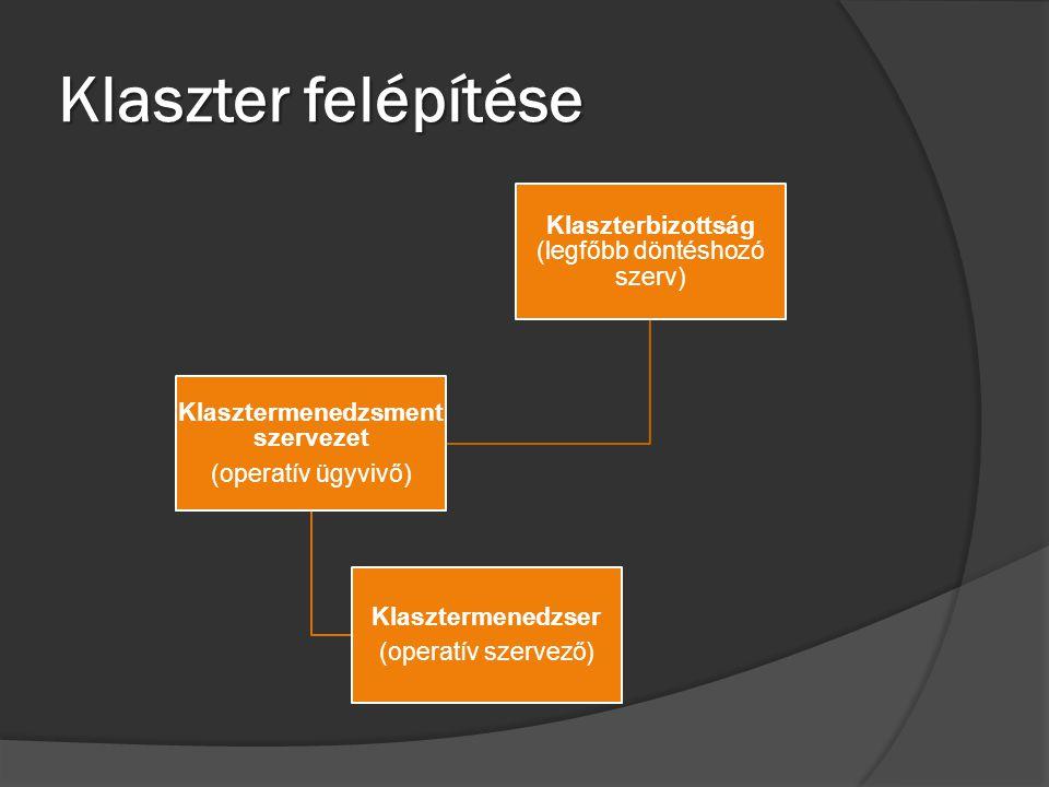 Klaszter felépítése Klaszterbizottság (legfőbb döntéshozó szerv) Klasztermenedzsment szervezet (operatív ügyvivő) Klasztermenedzser (operatív szervező
