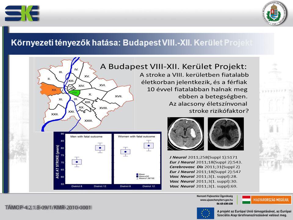 Környezeti tényezők hatása: Budapest VIII.-XII. Kerület Projekt