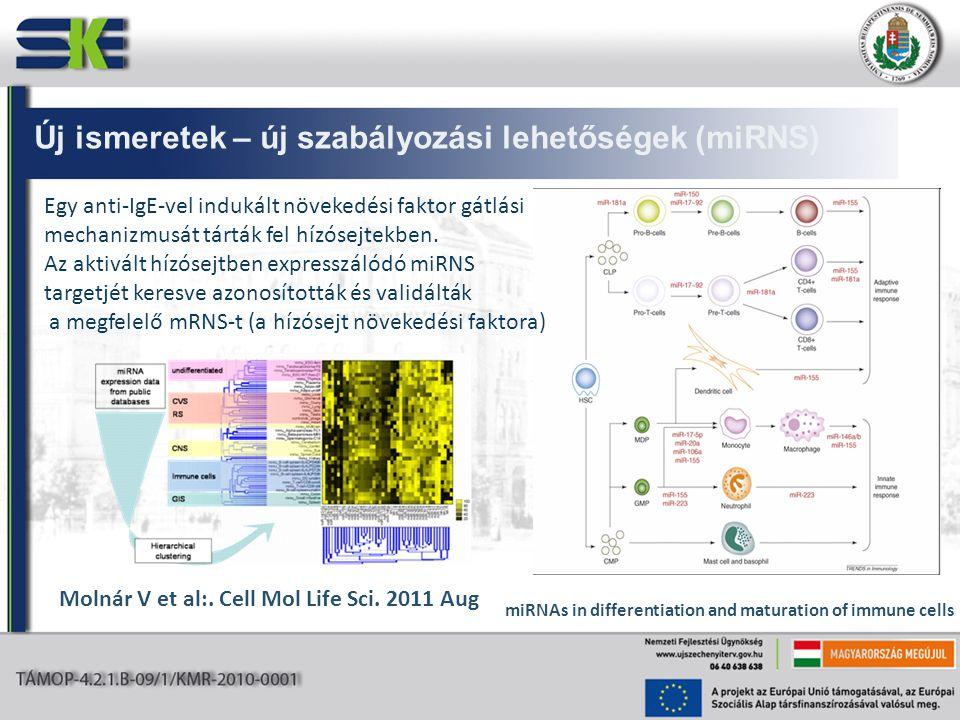 Egy anti-IgE-vel indukált növekedési faktor gátlási mechanizmusát tárták fel hízósejtekben.