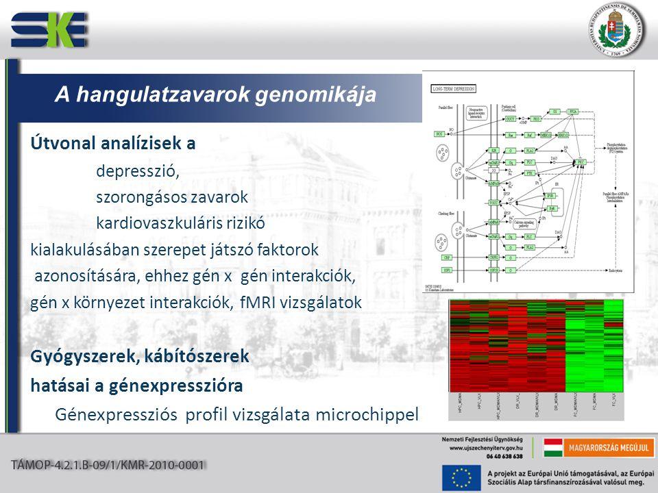 Útvonal analízisek a depresszió, szorongásos zavarok kardiovaszkuláris rizikó kialakulásában szerepet játszó faktorok azonosítására, ehhez gén x gén interakciók, gén x környezet interakciók, fMRI vizsgálatok Gyógyszerek, kábítószerek hatásai a génexpresszióra Génexpressziós profil vizsgálata microchippel A hangulatzavarok genomikája