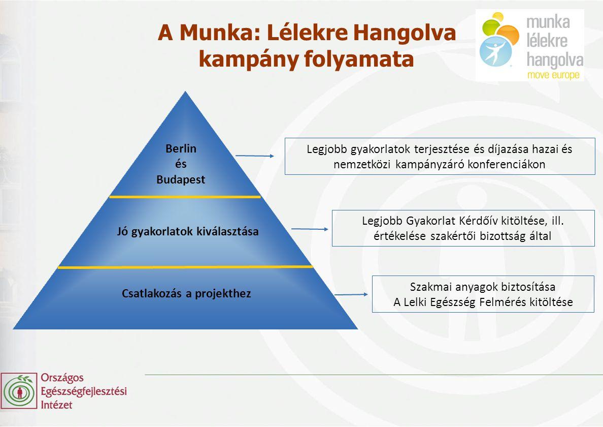 A Munka: Lélekre Hangolva kampány folyamata Legjobb Gyakorlat Kérdőív kitöltése, ill. értékelése szakértői bizottság által Legjobb gyakorlatok terjesz