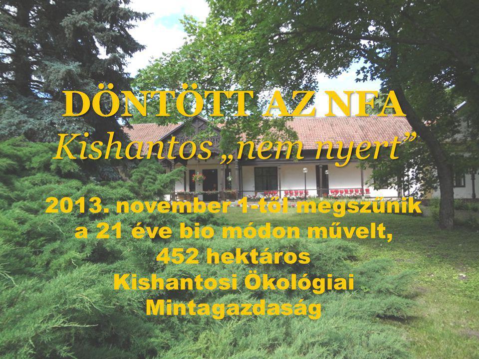 """s DÖNTÖTT AZ NFA Kishantos """"nem nyert 2013."""