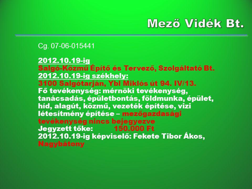 Cg.07-06-015441 2012.10.19-ig Salgó-Közmű Építő és Tervező, Szolgáltató Bt.