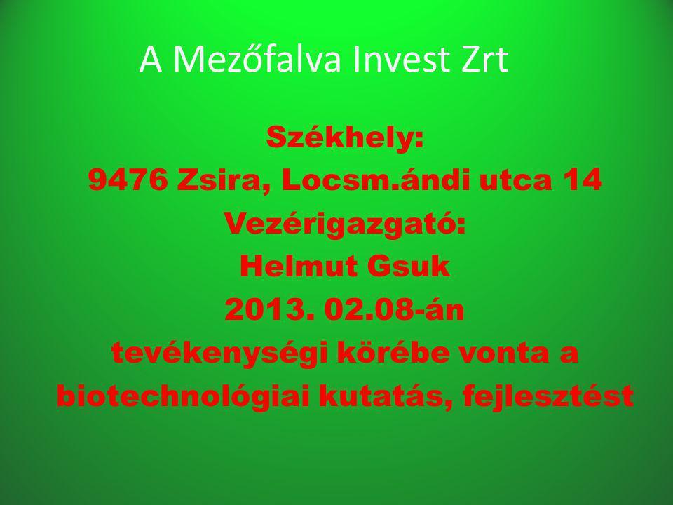 A Mezőfalva Invest Zrt Székhely: 9476 Zsira, Locsm.ándi utca 14 Vezérigazgató: Helmut Gsuk 2013.