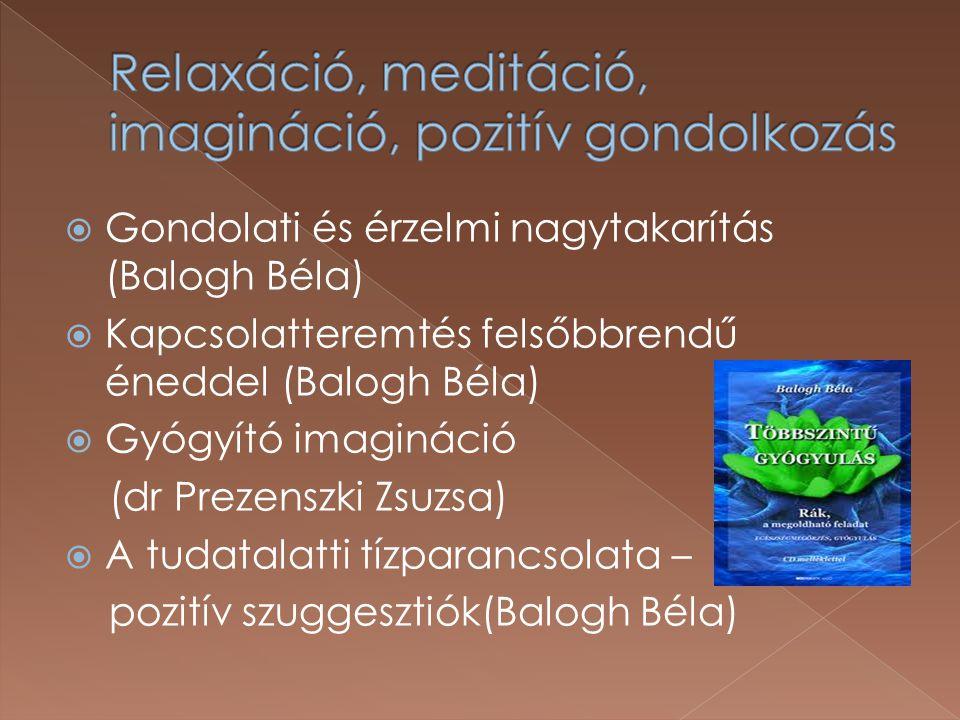  Gondolati és érzelmi nagytakarítás (Balogh Béla)  Kapcsolatteremtés felsőbbrendű éneddel (Balogh Béla)  Gyógyító imagináció (dr Prezenszki Zsuzsa)