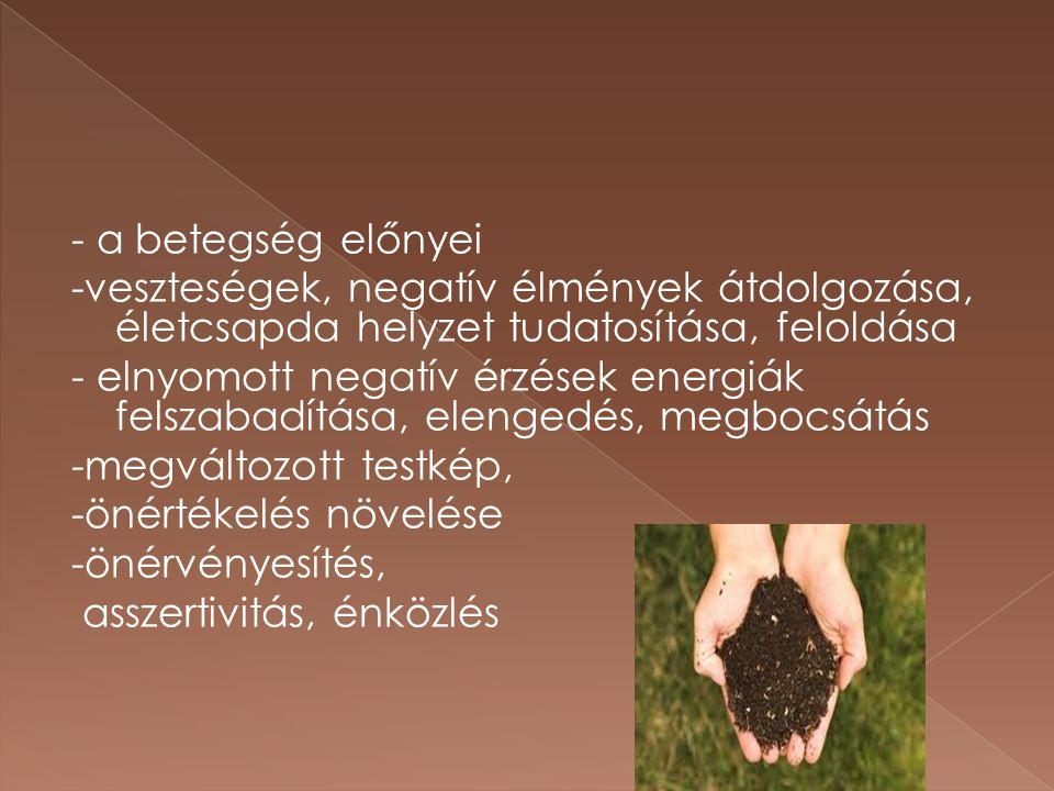 - a betegség előnyei -veszteségek, negatív élmények átdolgozása, életcsapda helyzet tudatosítása, feloldása - elnyomott negatív érzések energiák felsz