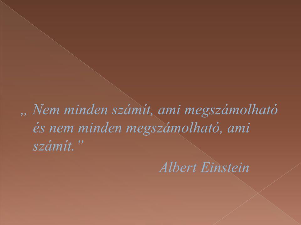 """"""" Nem minden számít, ami megszámolható és nem minden megszámolható, ami számít."""" Albert Einstein"""