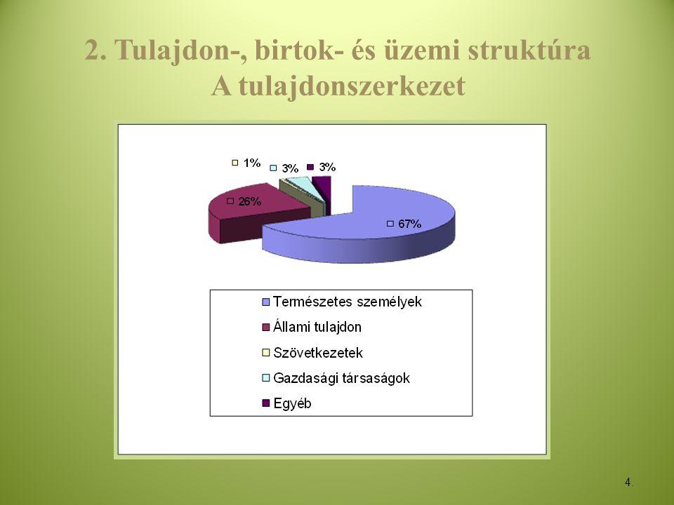4. 2. Tulajdon-, birtok- és üzemi struktúra A tulajdonszerkezet