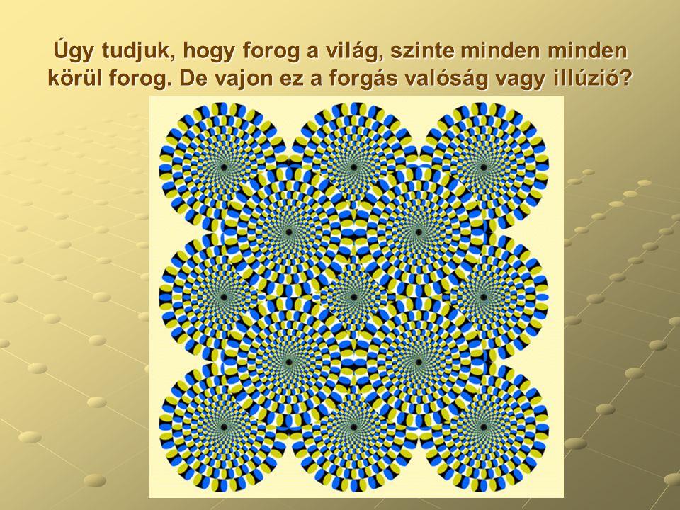 Néhány példa a természetből: Fibonacci a méheknél Egy méh kolóniában csak a királynő rak tojásokat.