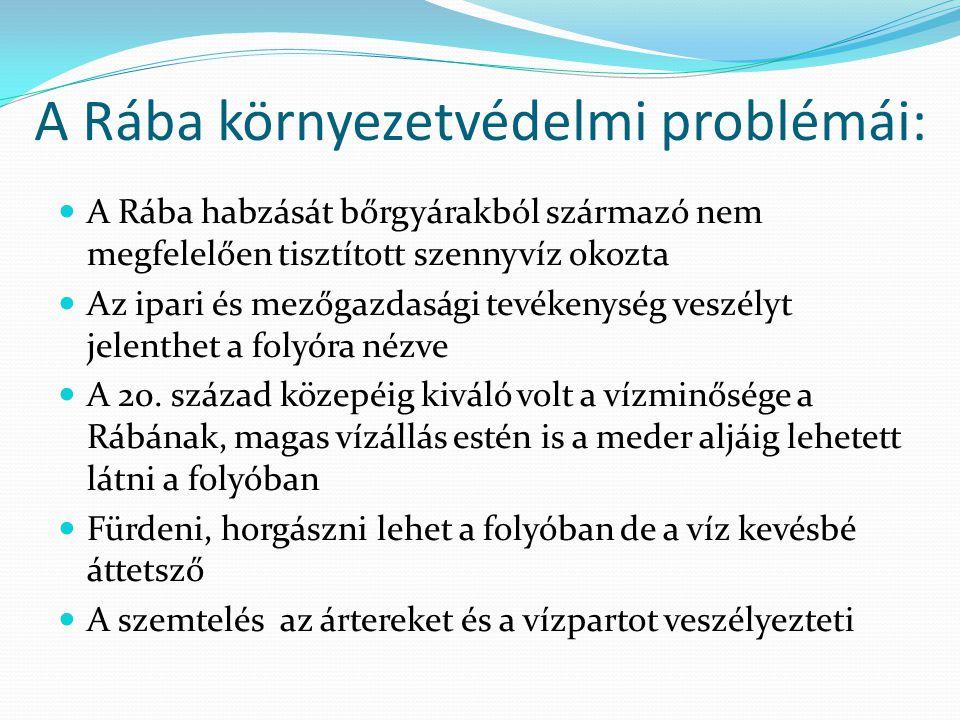 A Rába környezetvédelmi problémái:  A Rába habzását bőrgyárakból származó nem megfelelően tisztított szennyvíz okozta  Az ipari és mezőgazdasági tev