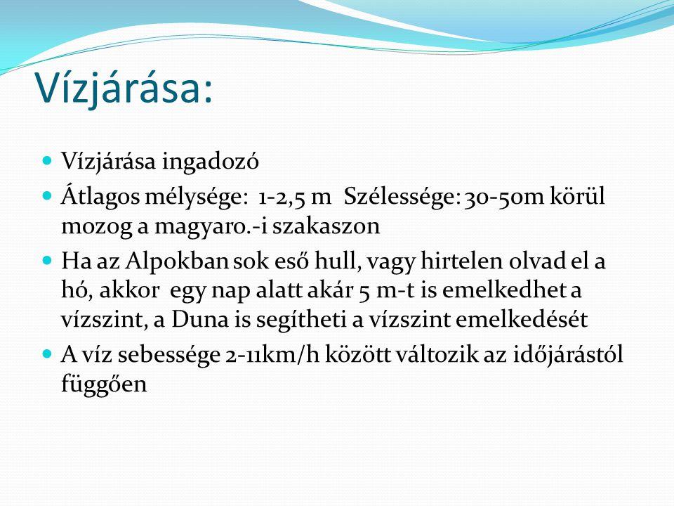 Vízjárása:  Vízjárása ingadozó  Átlagos mélysége: 1-2,5 m Szélessége: 30-50m körül mozog a magyaro.-i szakaszon  Ha az Alpokban sok eső hull, vagy