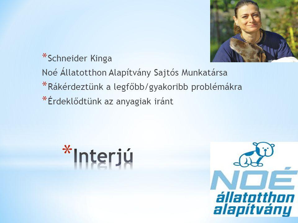 * Schneider Kinga Noé Állatotthon Alapítvány Sajtós Munkatársa * Rákérdeztünk a legfőbb/gyakoribb problémákra * Érdeklődtünk az anyagiak iránt