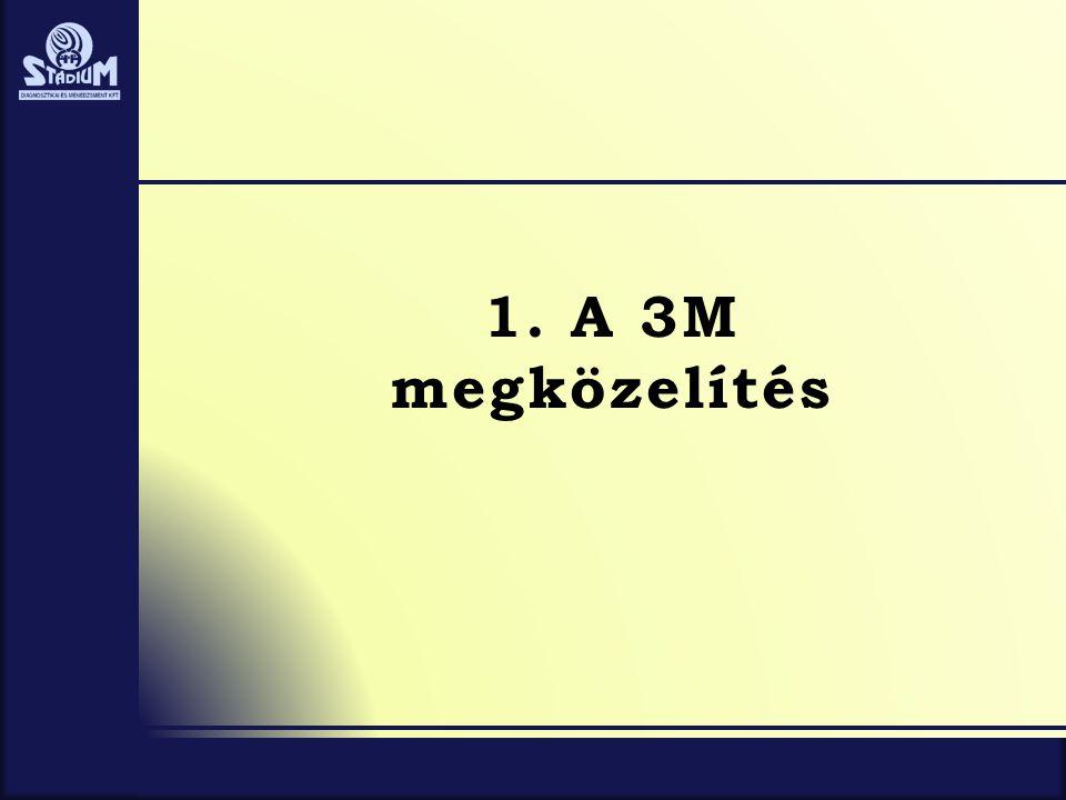 1. A 3M megközelítés
