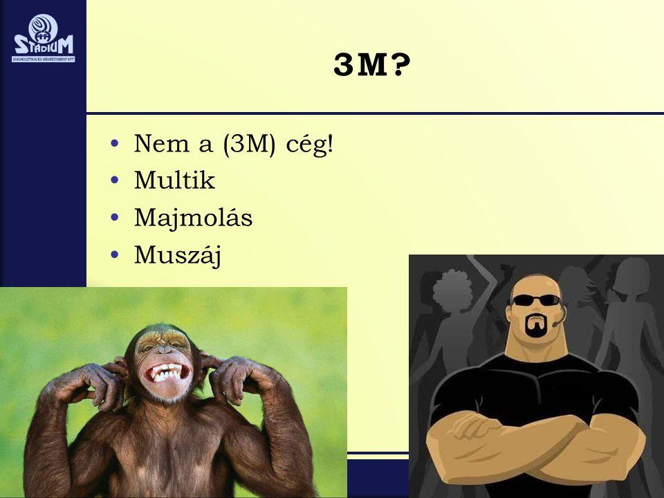 3M? •Nem a (3M) cég! •Multik •Majmolás •Muszáj
