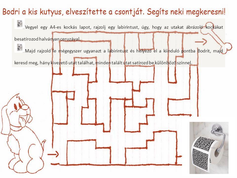 Vegyel egy A4-es kockás lapot, rajzolj egy labirintust, úgy, hogy az utakat ábrázoló kockákat besatírozod halványan ceruzával.