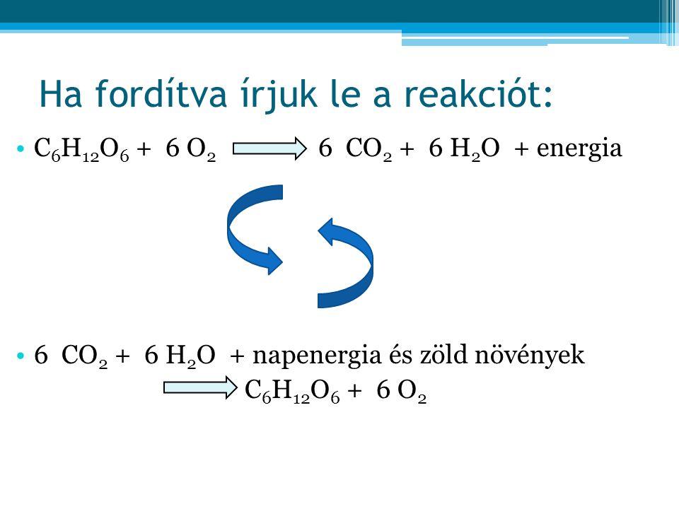 Ha fordítva írjuk le a reakciót: •C 6 H 12 O 6 + 6 O 2 6 CO 2 + 6 H 2 O + energia •6 CO 2 + 6 H 2 O + napenergia és zöld növények C 6 H 12 O 6 + 6 O 2