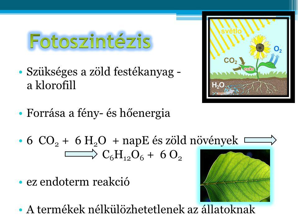 •Szükséges a zöld festékanyag - a klorofill •Forrása a fény- és hőenergia •6 CO 2 + 6 H 2 O + napE és zöld növények C 6 H 12 O 6 + 6 O 2 •ez endoterm