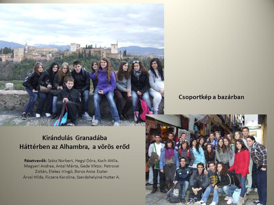 Kirándulás Granadába Háttérben az Alhambra, a vörös erőd Csoportkép a bazárban Résztvevők: Szász Norbert, Hegyi Dóra, Koch Attila, Megyeri Andrea, Ant