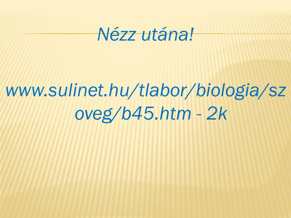Nézz utána! www.sulinet.hu/tlabor/biologia/sz oveg/b45.htm - 2k