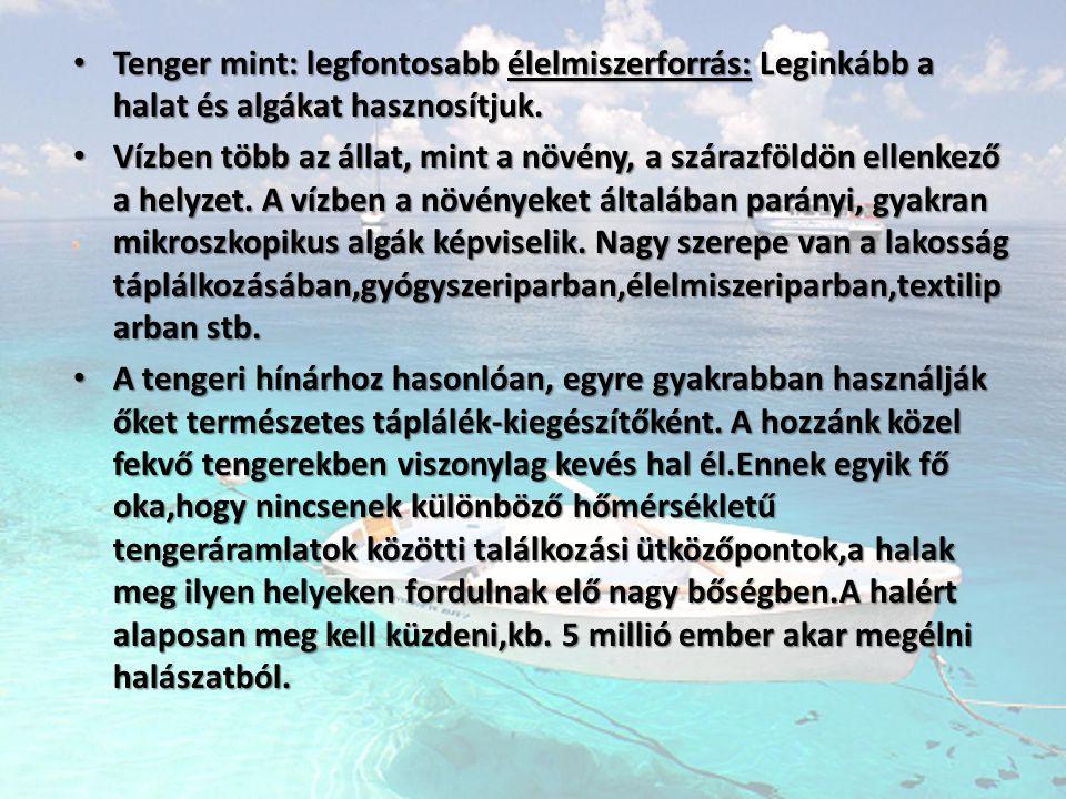• Tenger mint: legfontosabb élelmiszerforrás: Leginkább a halat és algákat hasznosítjuk. • Vízben több az állat, mint a növény, a szárazföldön ellenke