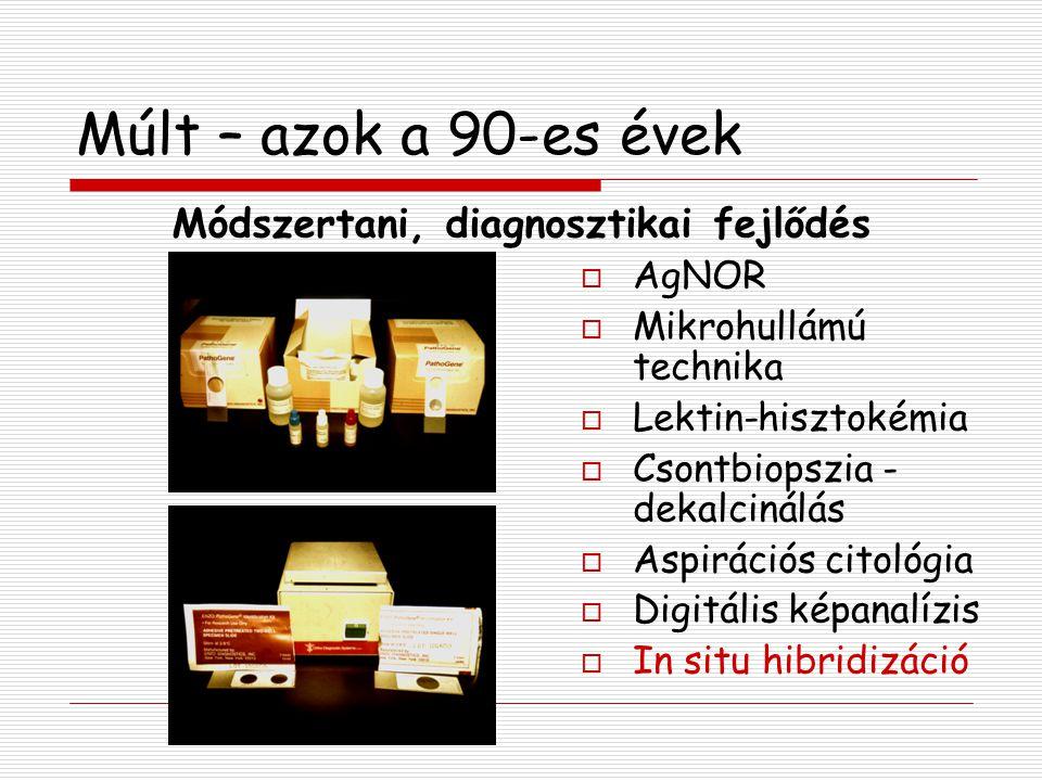 Múlt – azok a 90-es évek  AgNOR  Mikrohullámú technika  Lektin-hisztokémia  Csontbiopszia - dekalcinálás  Aspirációs citológia  Digitális képana