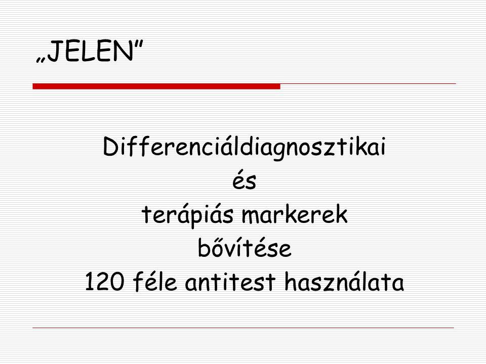 """""""JELEN"""" Differenciáldiagnosztikai és terápiás markerek bővítése 120 féle antitest használata"""