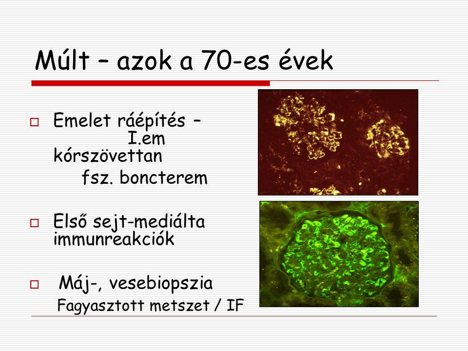Múlt –2000-2005 Differenciáldiagnosztikai és terápiás markerek  Hematopatológia áramlás citometria műgyantás csontbiopszia feldolgozás  Emlődaganatok HER-2 / CISH  Gyomor biopszia Clarythromycin rezisztencia / FISH