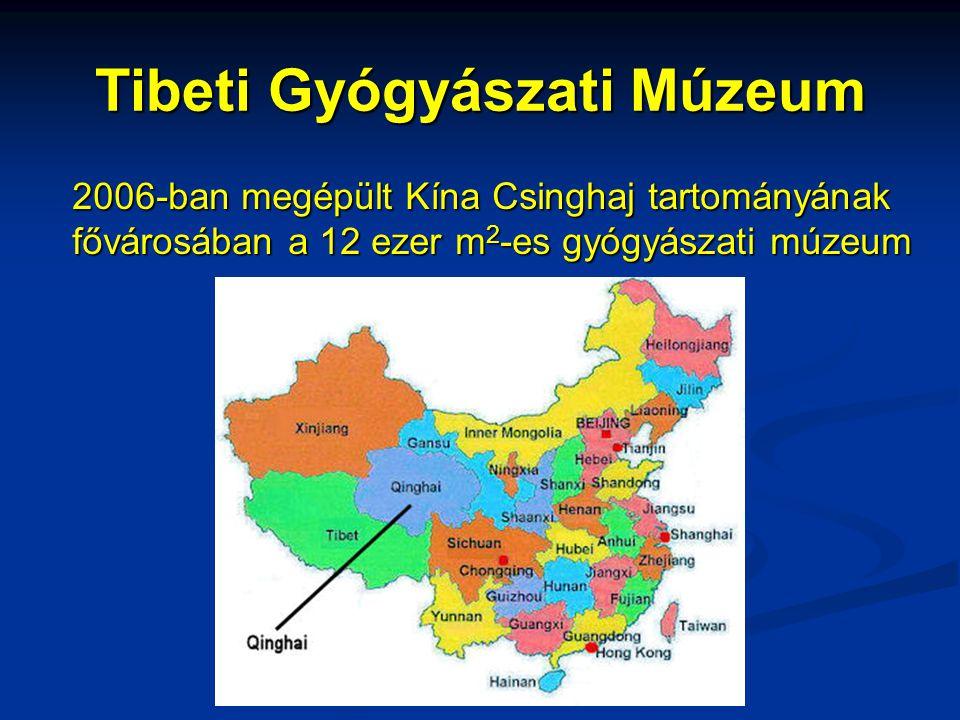 Tibeti Gyógyászati Múzeum 2006-ban megépült Kína Csinghaj tartományának fővárosában a 12 ezer m 2 -es gyógyászati múzeum