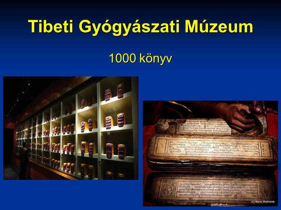 Tibeti Gyógyászati Múzeum 1000 könyv