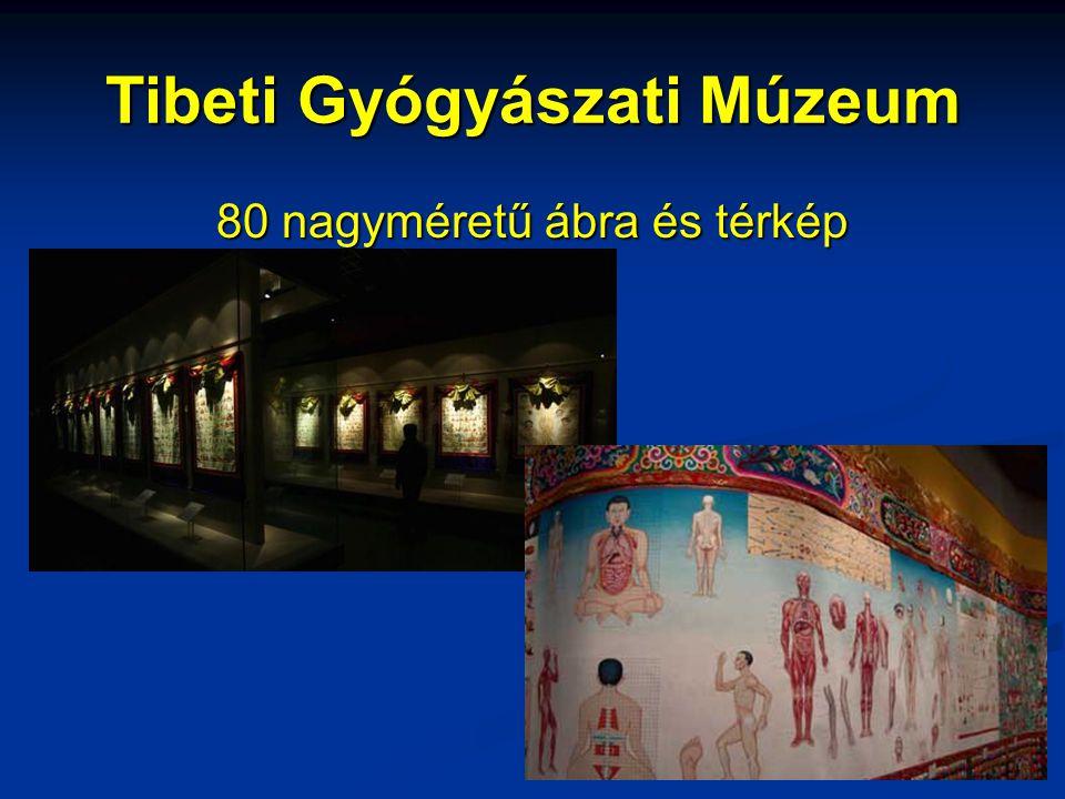 Tibeti Gyógyászati Múzeum 80 nagyméretű ábra és térkép